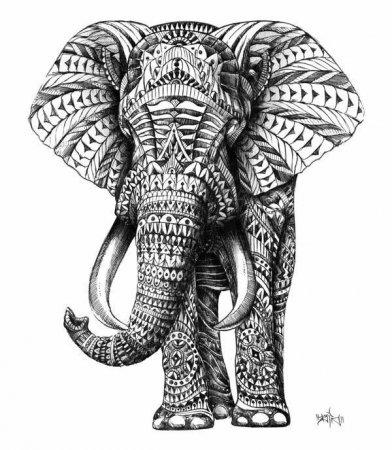 Зенарт слоны для вдохновения